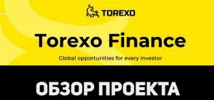 Torexo – обзор проекта и объективный отзыв о нем